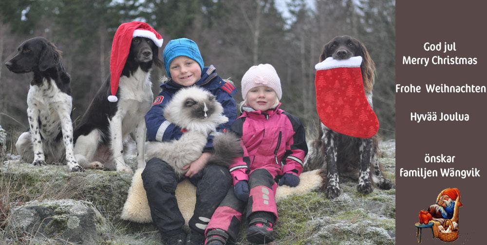 god jul från Wängviks